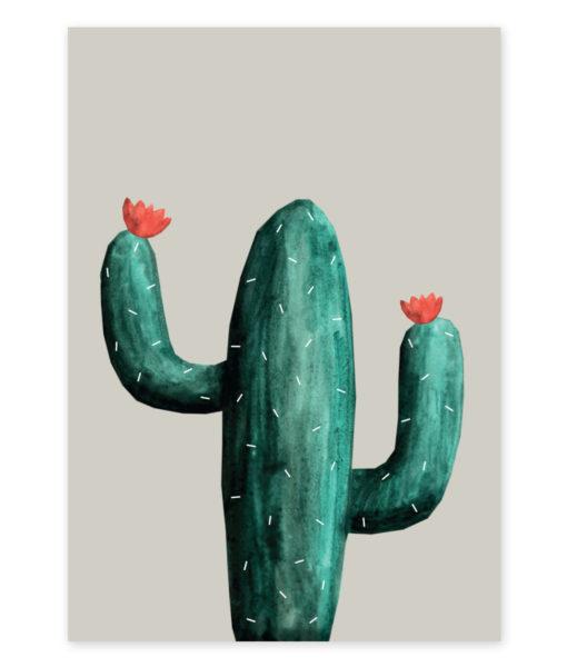 kaktus-mexico