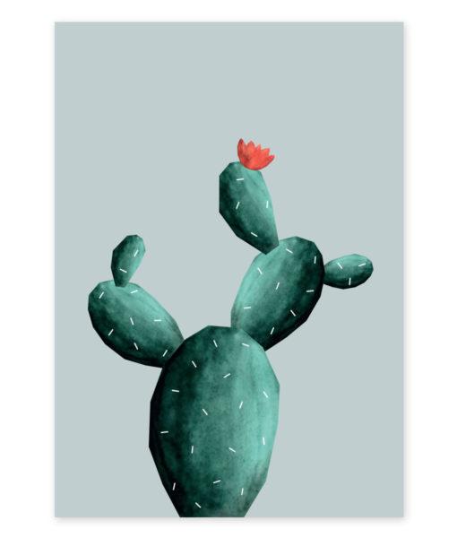 kaktus-razvejan