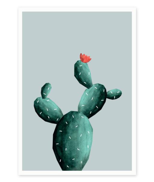 kaktus-razvejan-a4